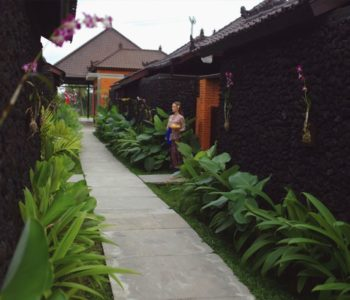 villa in ubud Pathway