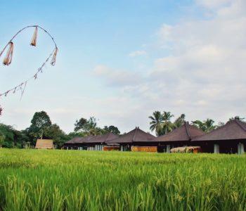 villa in ubud Surrounding 002