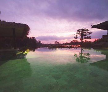 villa in ubud poolbar
