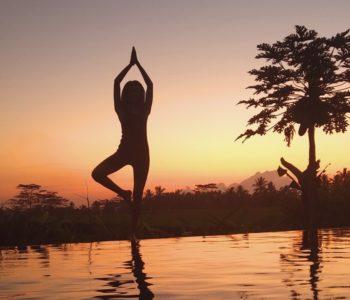 villa in ubud poolbar-yoga