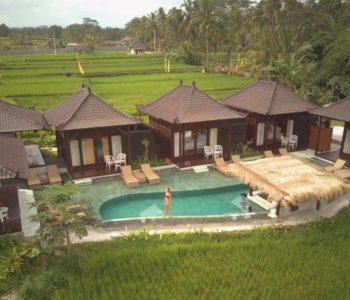 villa in ubudPoolbar 003